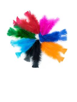 Imagem de Pena Colorida Pacote com 5un